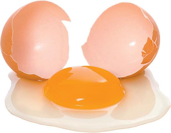 กินไข่ได้วันละกี่ฟอง